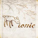 ionic-logo